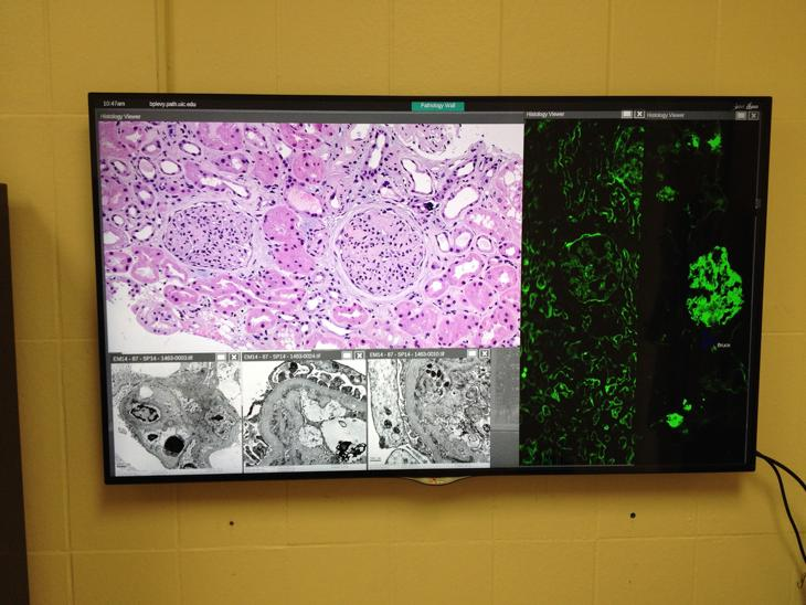 Histology Images on the SAGE environment